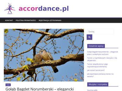 Zespół muzyczny Toruń i region