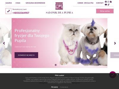 Strzyżenie psa i kota Bydgoszcz