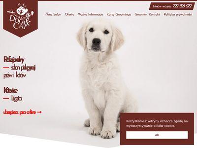 Strzyżenie psów Katowice,