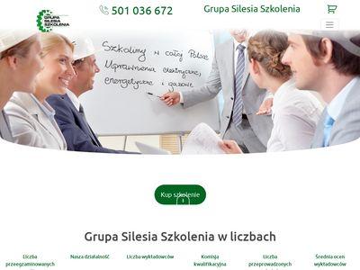Szkolenia Silesia