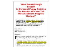 Emergency Puppy Training Guide