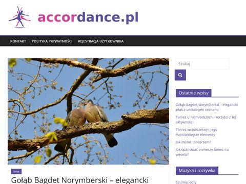 Zesp贸艂 muzyczny Toru艅 i region