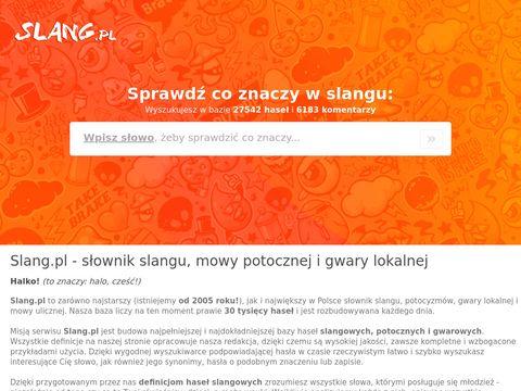 Slang znaczenie - coznaczyslang.pl