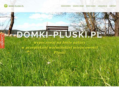 Domki letniskowe - wieÅ› Pluski, Warmia i Mazury