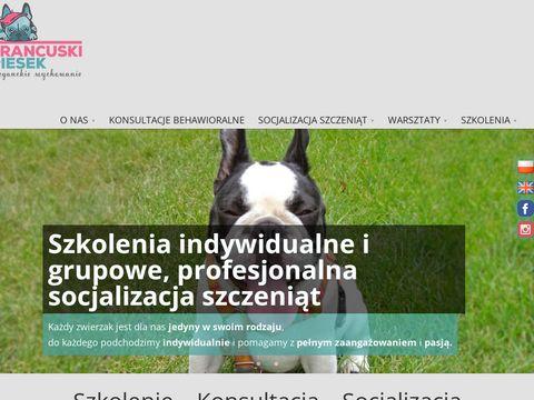 Szkolenie ps贸w w Katowicach - Francuskipiesek.pl