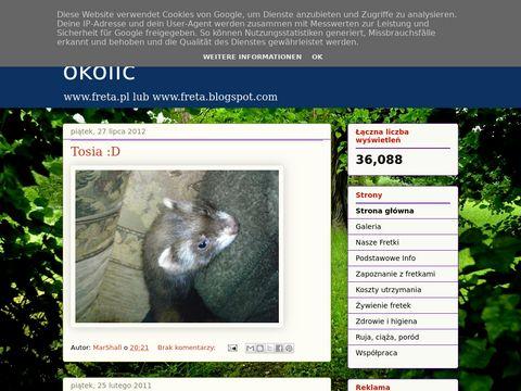 Strona o Fretkach z �owicza i okolic