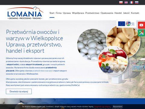 Lomania Polsko - Francuska sp. z o.o. Przetwórstwo pieczarek i cebuli Szczodrowo Farsz pieczarkowy