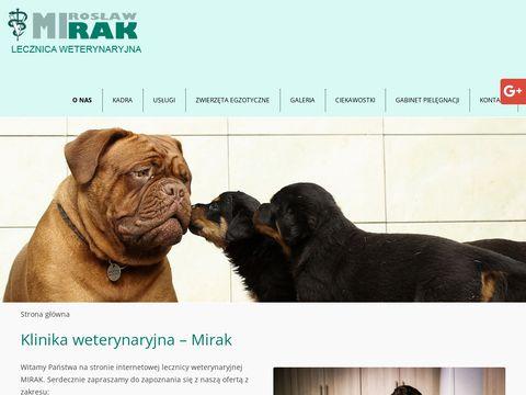 MIROS艁AW RAK leczenie ps贸w Toru艅