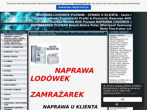 Lodówki i Zamrażarki- Naprawa Serwis Poznań