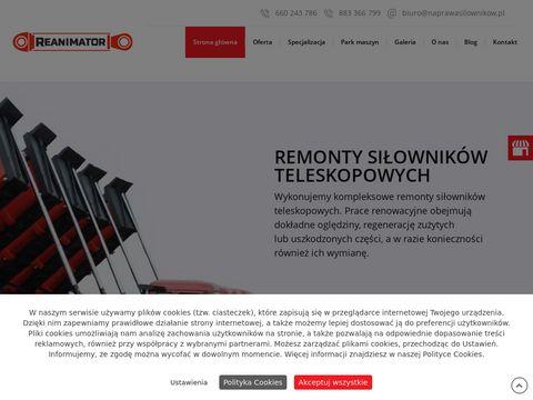 Naprawasilownikow.pl - Reanimator