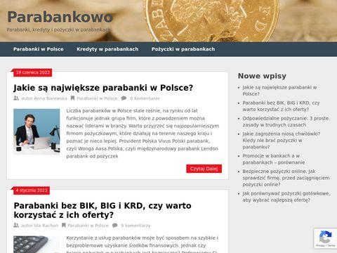 Pożyczki w 15 minut przez internet - lista parabanków
