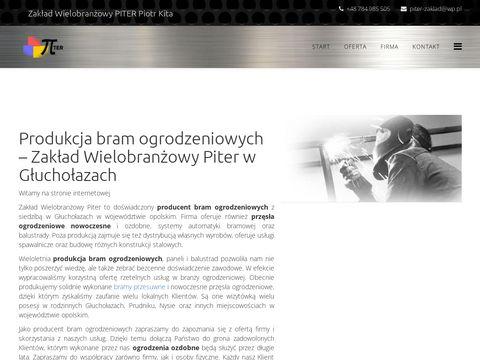 Piter-zaklad.pl automatyka do bram nysa