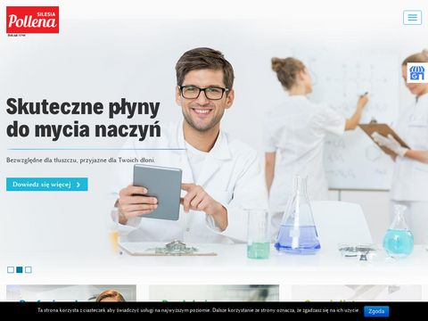 Pollena-paczkow.pl