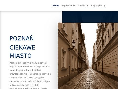 Poznan-naszemiasto.pl