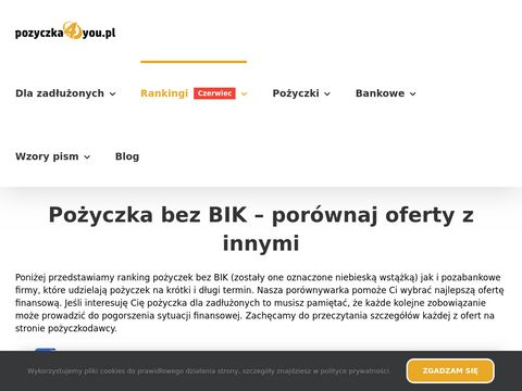 Pożyczki bez BIK - kredyt, pożyczka chwilówka przez internet