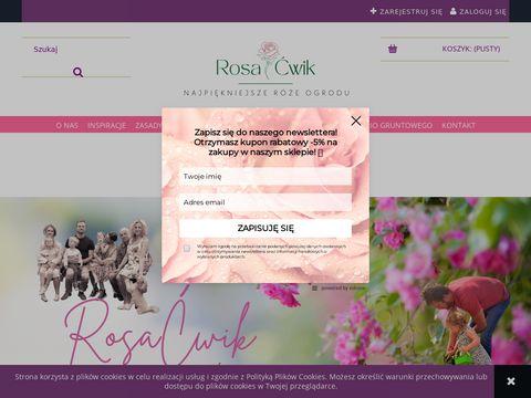 Rosacwik-sklep.pl róże poznań