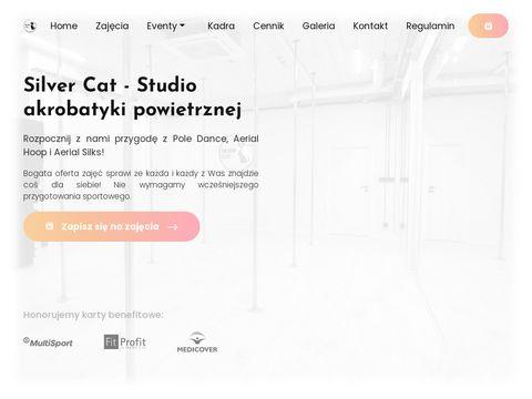Silver Cat Studio - modelowanie figury.
