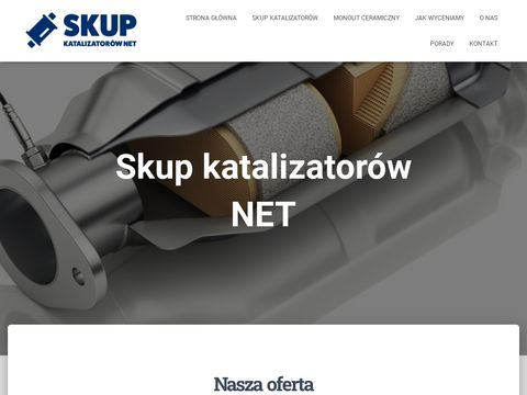 Skupkatalizatorow.net