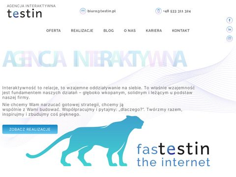 Strony internetowe, sklepy, serwisy www - Testin.pl