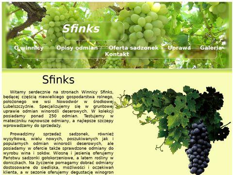 Sadzonki winoro艣li - Winnica Sfinks - winnicasfinks.pl