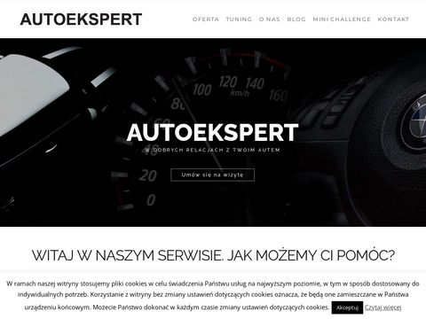 Serwis Opel - Auto Ekspert