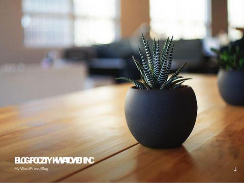 Kwiaty - blogwyslijkwiaty.com