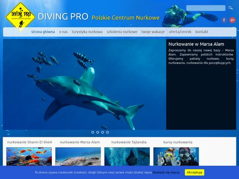 Diving Pro - nurkowanie i wycieczki do Egiptu