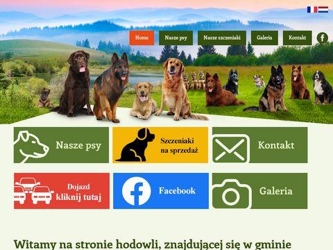 Profesjonalna hodowla - hodowlapsowrasowych.pl