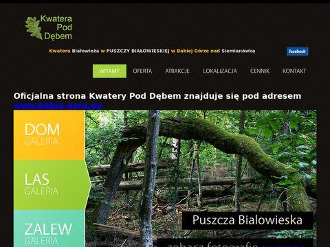 Noclegi Puszcza Białowieska