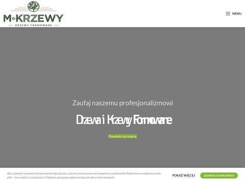 M-Krzewy 呕ory, Krzewy Ozdobne Jastrz臋bie Zdr贸j, Drzewa formowane i krzewy bonsai