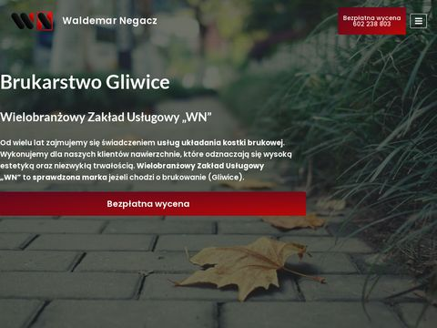 negacz.pl