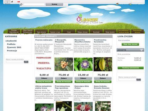 Oleander - sklep z nasionami i sadzonkami