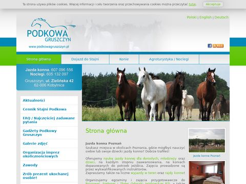 Nauka jazdy konnej Poznań i okolice