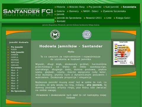 Jamniki długowłose miniaturowe i królicze.Hodowla Santander FCI