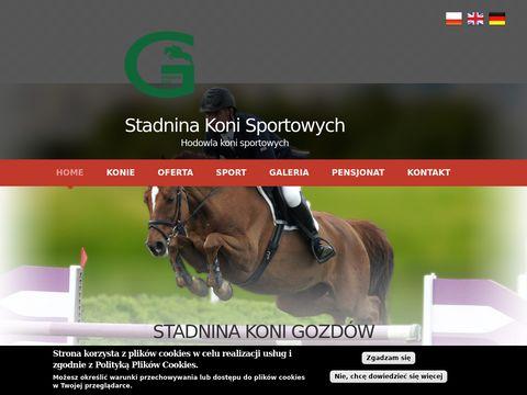 Sprzeda偶 koni sportowych - skgozdow.pl