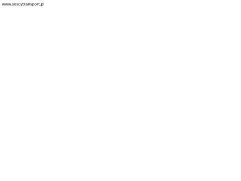 Przewóz osób Polska Holandia – idealne rozwiązanie – firma SOSCY