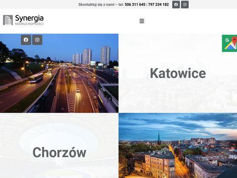 Synergianieruchomosci.com.pl