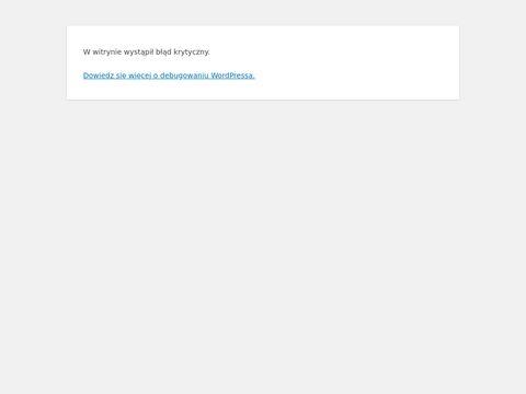 VIK-KAR Wypo偶yczalnia Samochod贸w Osobowych - Wyszk贸w