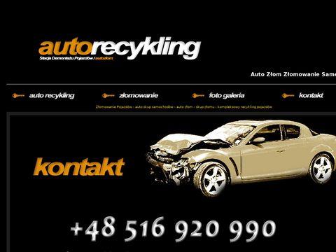Auto Z艂om 艢l膮sk - Z艂omowanie Samochod贸w - Firma Recyklingowa