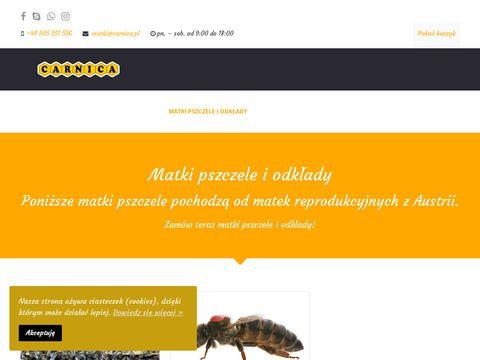 Matki pszczele krainka, rasa kraińska - Carnica.pl