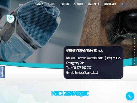 Weterynarz | Leczenie Koni | https://eqmedic.pl/