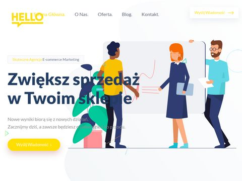 Pozycjonowanie sklepów Hello Marketing