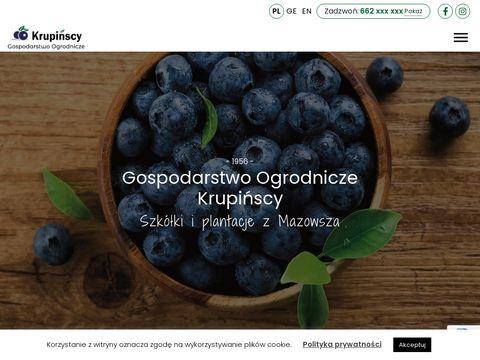 Strona g艂贸wna - krupinscy.com