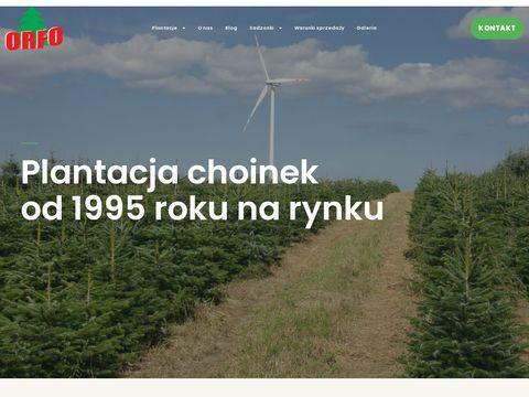 Choinki 艣wi膮teczne - orfo.pl