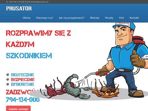 Dezynsekcja - prusator.pl