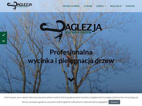 Wycinka drzew Nowy S膮cz - daglezja-wycinkadrzew.pl