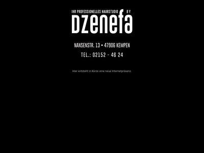 Ihr Professionelles Haarstudio by Dzenefa