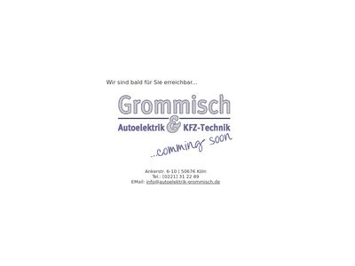 Autoelektrik & KFZ-Technik Sven Grommisch