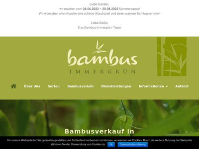 Bambus Hamburg