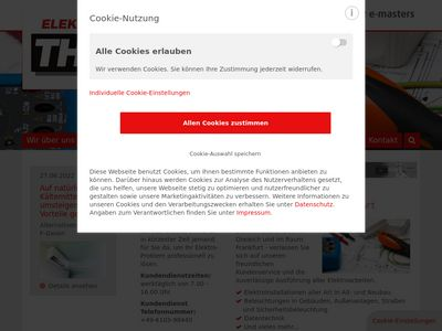 Thuy GmbH, Elektrobau